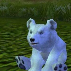 Baby Blizzard Bear - ChromieCraft